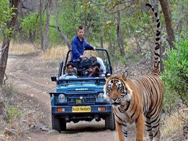 Same Day Jaipur Ranthambore by Car